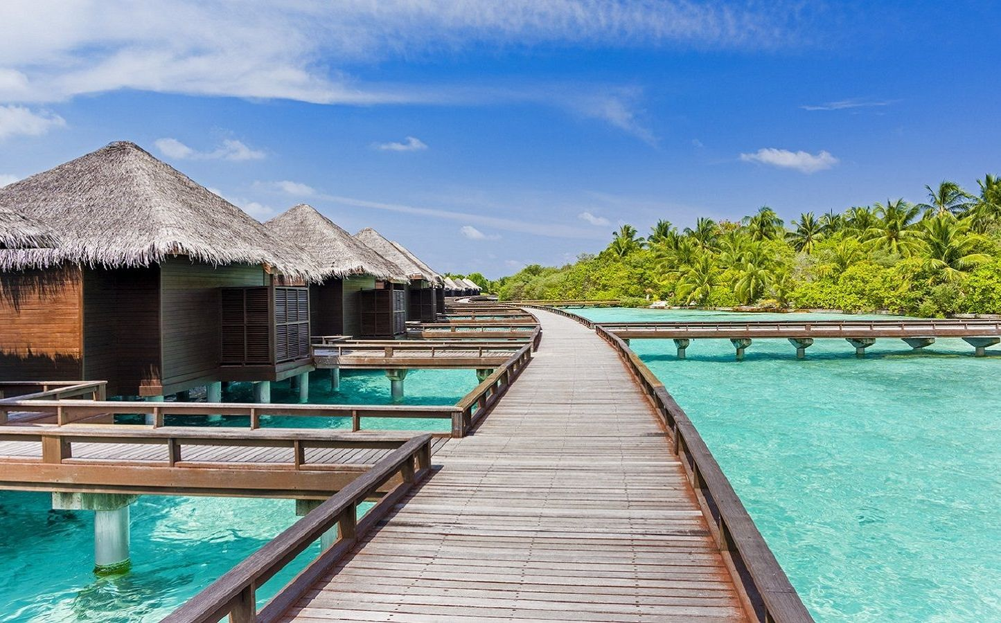Stay in water Bungalow in the Maldives wittyperson.com